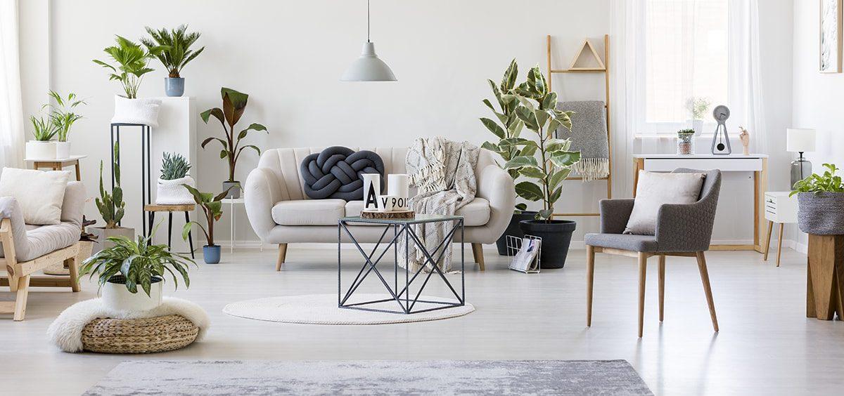 LMNP -location meublée